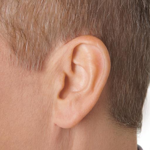 KARYN: Best buy hearing aids